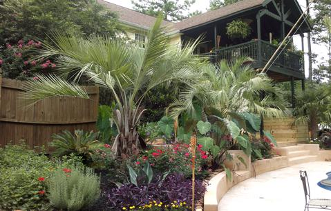 Tropical Landscape And Design In Pictures Images For